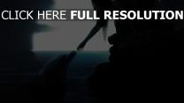 dauphin bras lune nuit