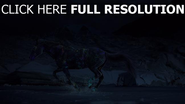 fond d'écran hd cheval multicolore courir nuit