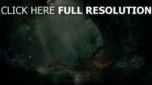 forêt cerf rayon ruisseau