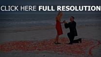 proposition de mariage rivage pétale