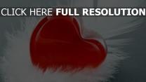 cœur figure plume gros plan