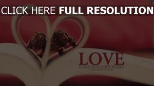 cœur livre figure inscription