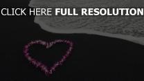 cœur pétale plage océan