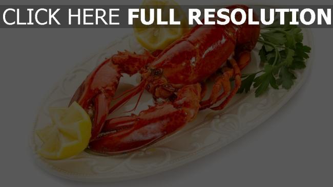 fond d'écran hd homard délicieux citron plat