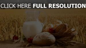 lait champ pain nature morte