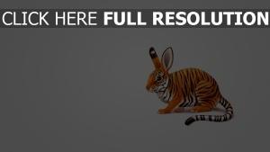 hybride tigre lapin amusant