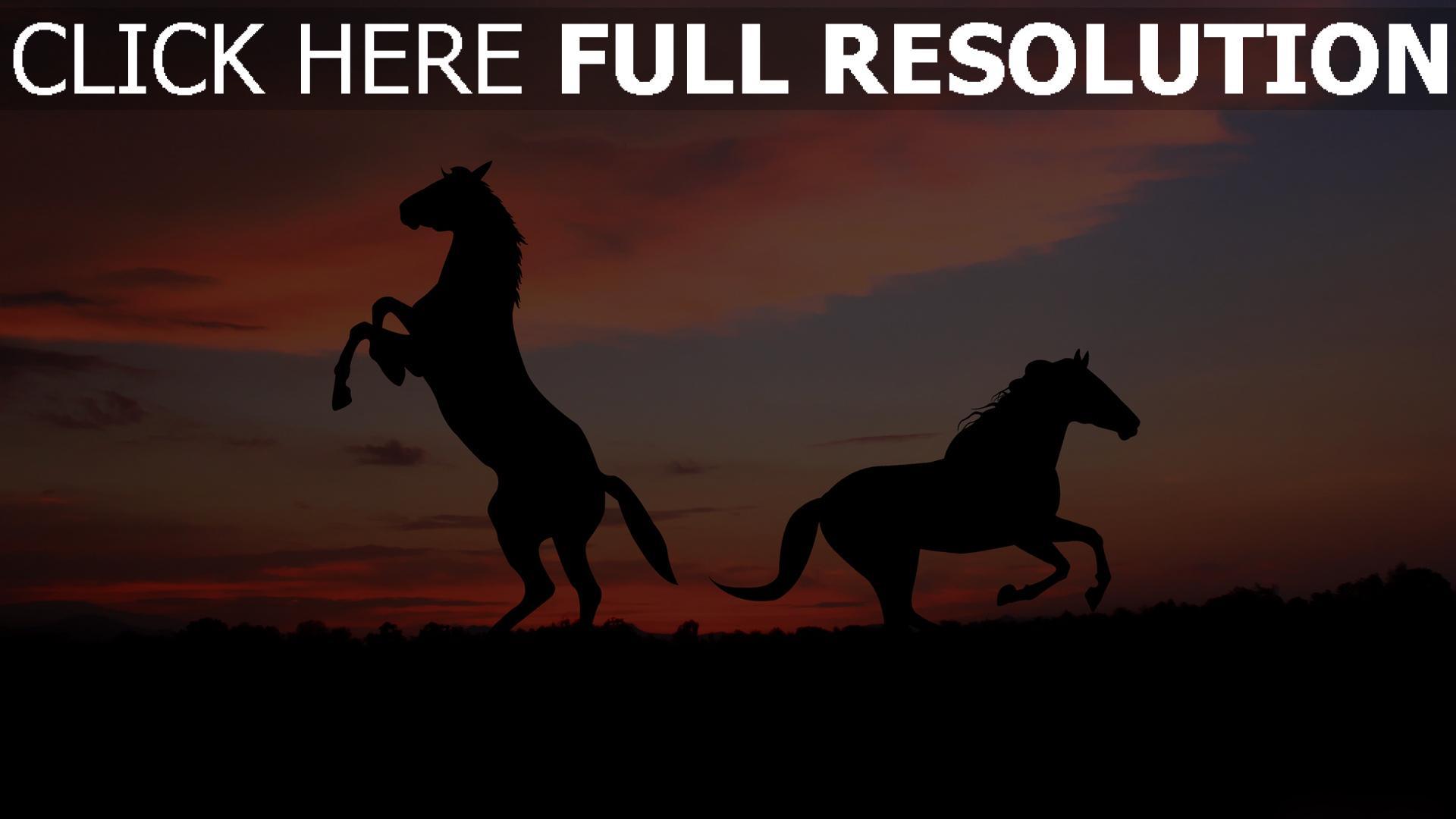 fond d'écran 1920x1080 cheval soirée silhouette horizon