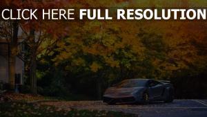 lamborghini gallardo rêve automne voiture sportive de prestige