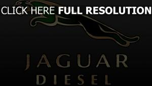 jaguar logo inscription