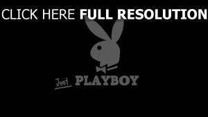 playboy logo foncé arrière-plan