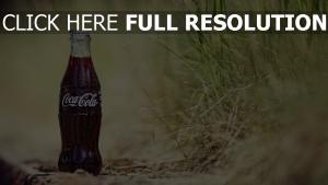 coca-cola bouteille herbe arrière-plan flou
