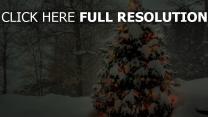 arbre de noël enneigé forêt guirlande