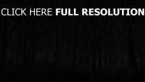 forêt foncé terrible silhouette