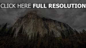rock forêt nuage automne écossé