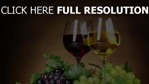 vin verre raisins vue de face