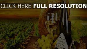vin bouteille raisins champ nature morte