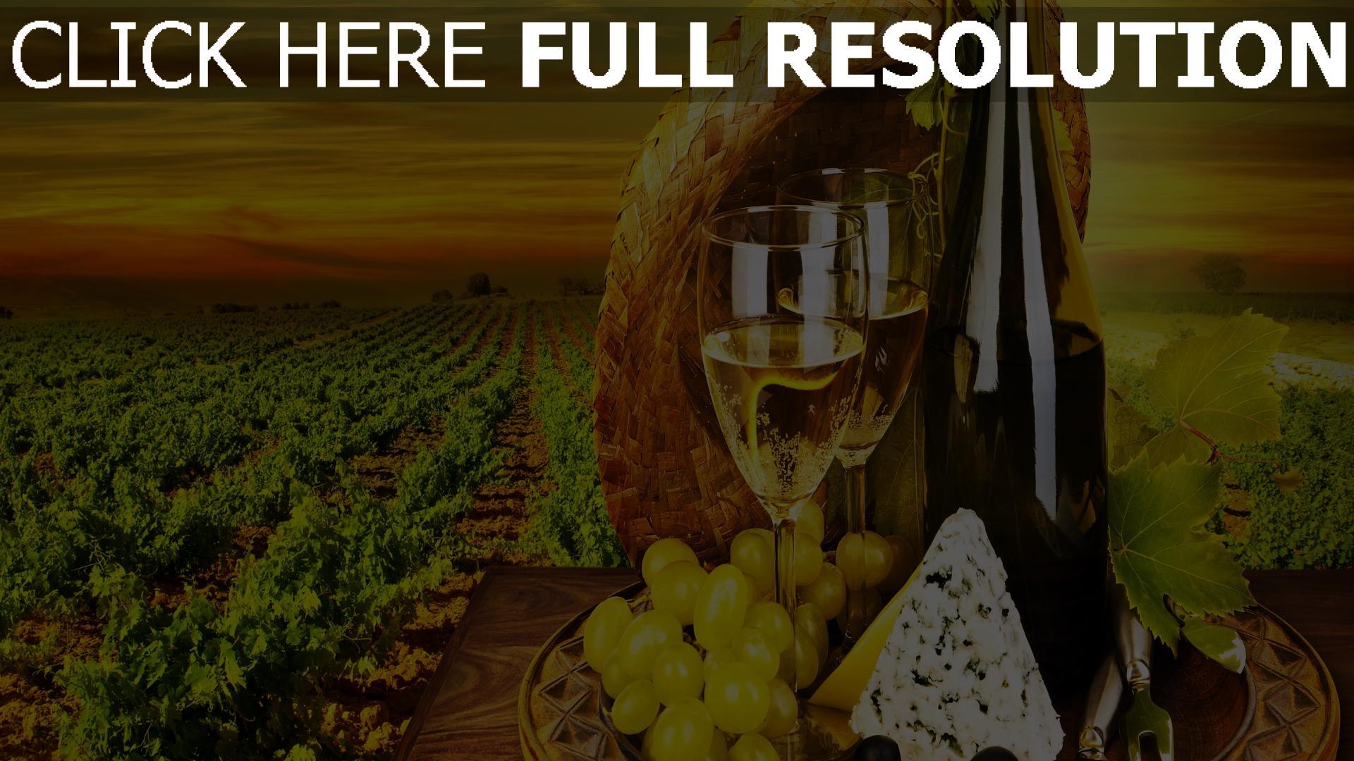 fond d'écran 1920x1080 vin bouteille raisins champ nature morte