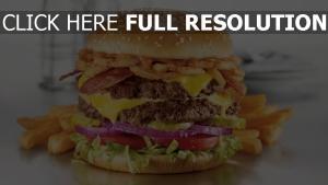 burger délicieux pommes de terre frites
