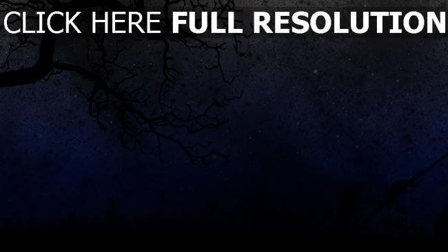 fond d'écran hd nuit arbre foncé étoile