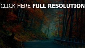 forêt route automne liechtenstein