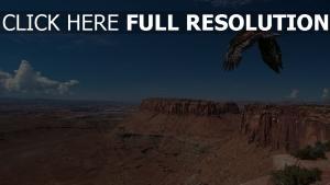 aigle canyon desert vue aérienne états-unis