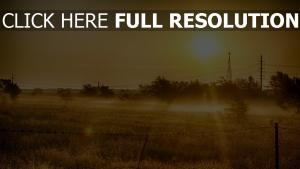 champ coucher du soleil texas