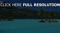azur océan seychelles palmier île montagne