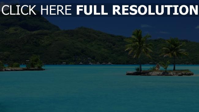 fond d'écran hd azur océan seychelles palmier île montagne