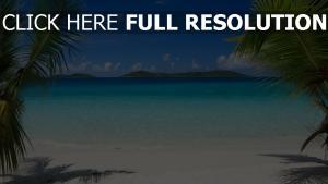 plage seychelles palmier paradis