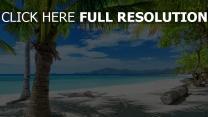 côte seychelles azur océan palmier