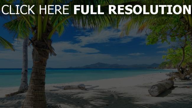 fond d'écran hd côte seychelles azur océan palmier