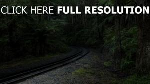 chemin de fer forêt suisse