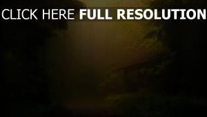 mansion solitaire forêt rayon romantique