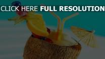 noix de coco orange arrière-plan flou