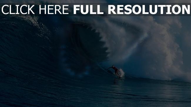 fond d'écran hd vague surf requin éclaboussure