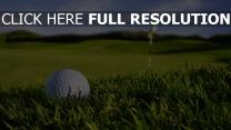 golf balle gros plan terrain