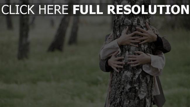 fond d'écran hd arbre bras couple arrière-plan flou