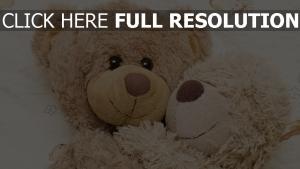 ours en peluche étreinte bonheur