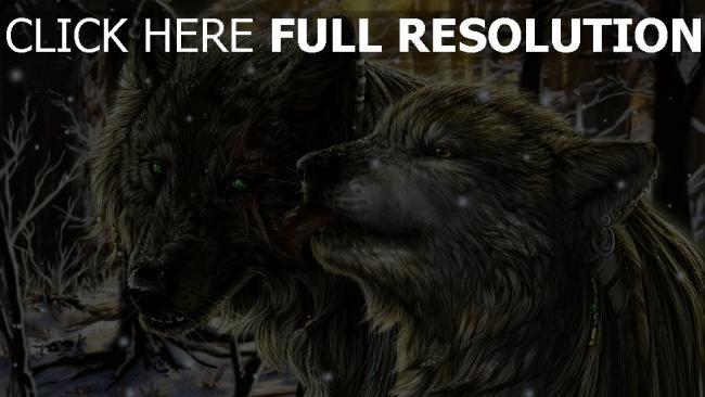 fond d'écran hd loup couple tempête de neige forêt