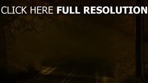 route hiver forêt états-unis