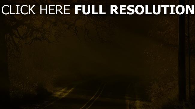 fond d'écran hd route hiver forêt états-unis