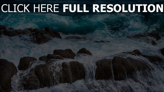 fond d'écran hd pierre mousse mer magnifique