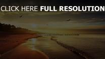 côte nuageux mouette océan calme espagne
