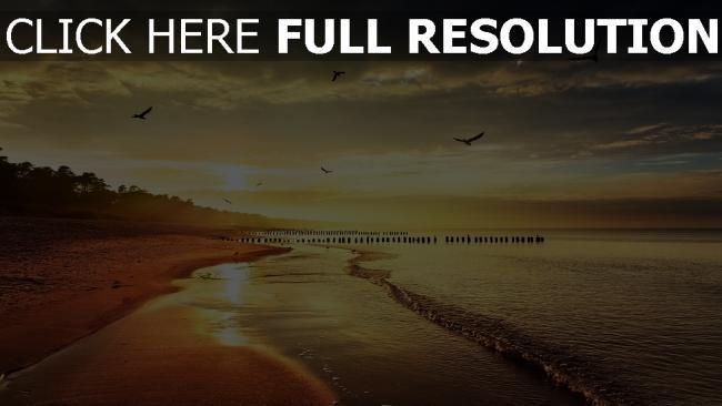 fond d'écran hd côte nuageux mouette océan calme espagne