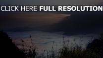 montagne nuageux roseau chine