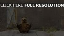 ours entraînement