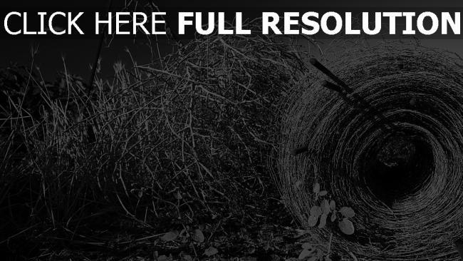 fond d'écran hd champ herbe automne noir et blanc
