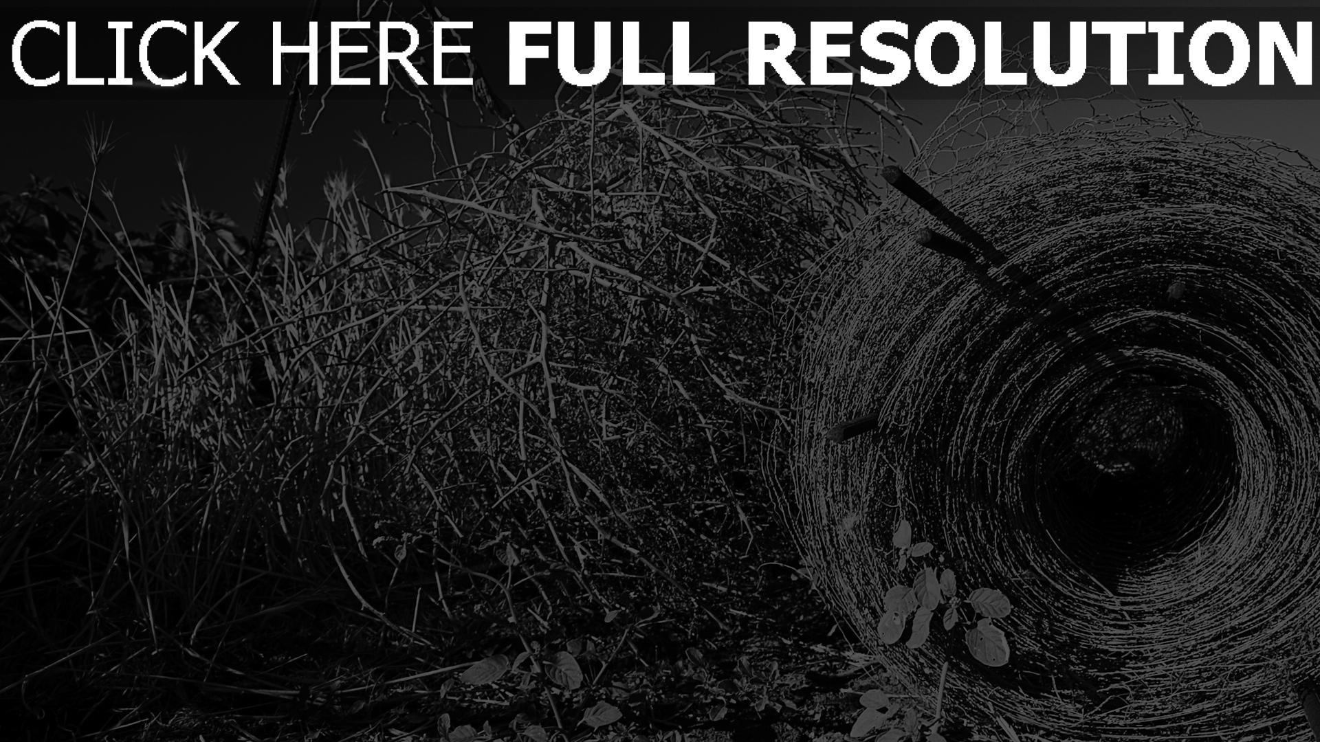fond d'écran 1920x1080 champ herbe automne noir et blanc