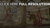 cheval bébé gare coupé triste