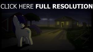 cheval bébé nuit silhouette